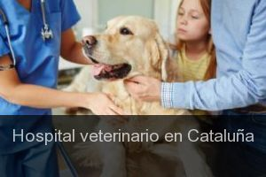 Hospital veterinario en Cataluña