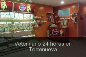 Veterinario 24 horas en Torrenueva
